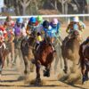 How to Bet on Horse Races? Simple Guide For Beginners